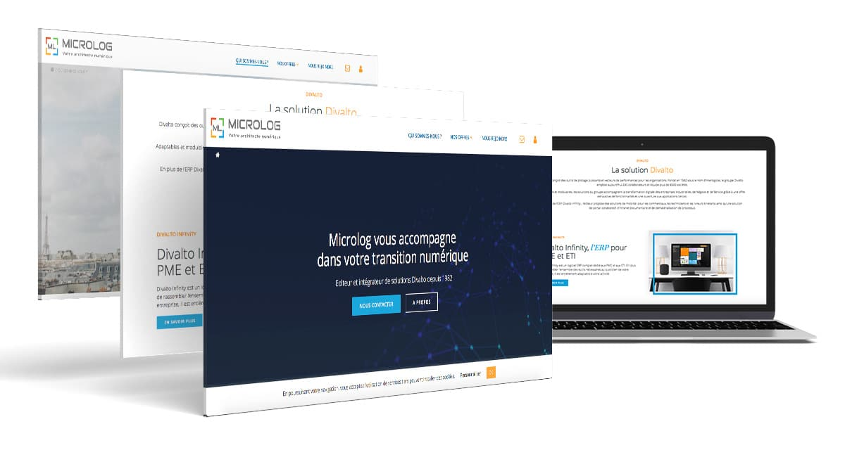 Site-vitrine-Microlog